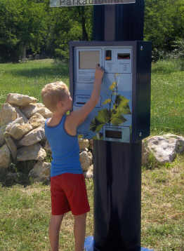 Automat im Pollux-System